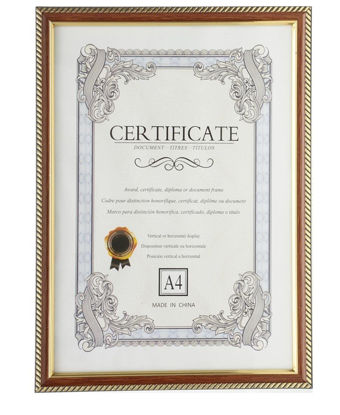 Picture of Document Frame - Tan