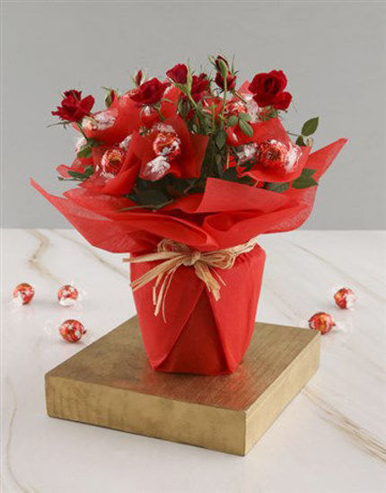 Picture of Red Rose Bush And Chocolates
