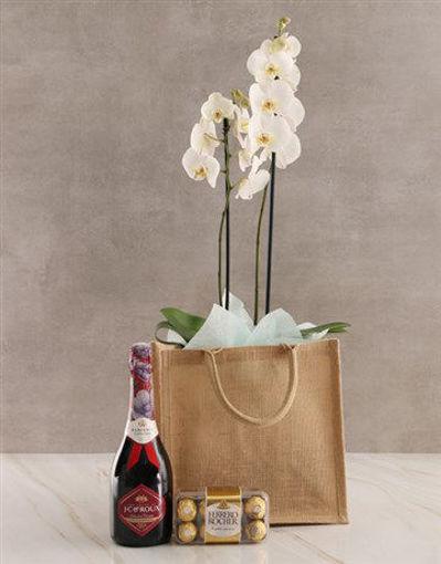 Picture of Totes Amazing Orchid Gratitude Hamper
