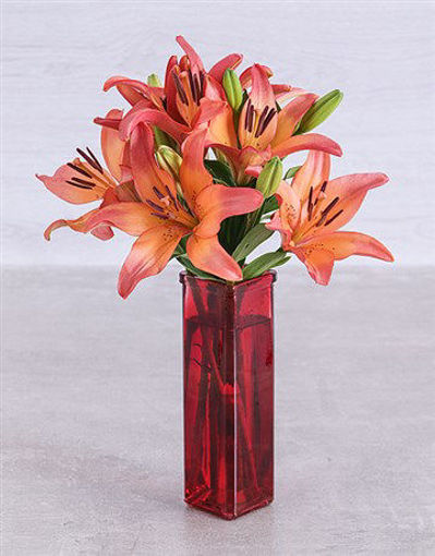 Picture of Sunset lilies in a Red Straight Vase